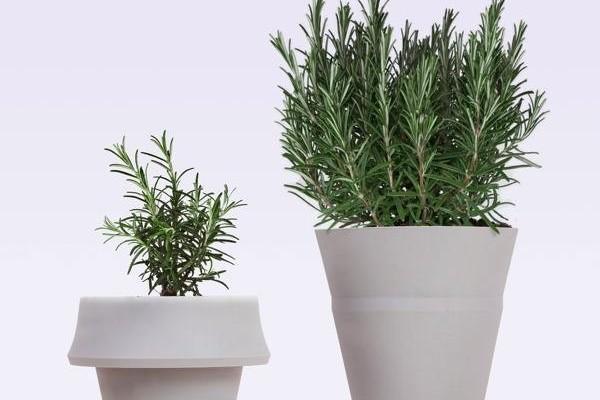 Fold Pot, el recipiente que crece con la planta